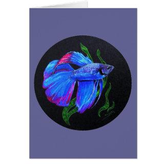 BETTA!!! Siamese stridighetfisk Hälsningskort