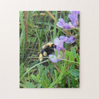 Bi för vild F0002 på purpurfärgad vildblomma Pussel