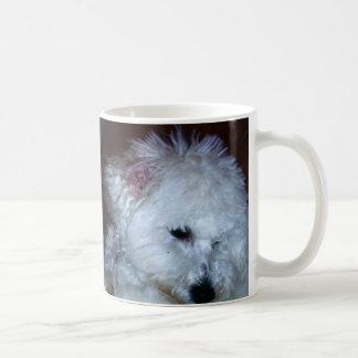 Bichon valp kaffemugg
