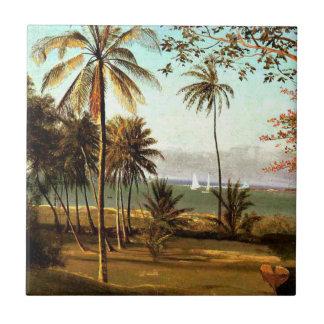Bierstadt - Florida plats Kakelplatta