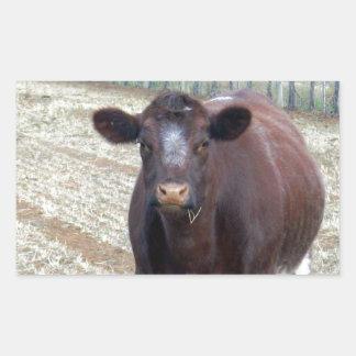 Big_Fat_Brown_Cow _, Rektangulärt Klistermärke