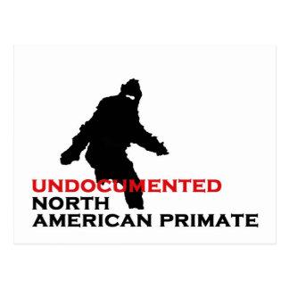BIGFOOT: UNDOCUMENTED NORD - amerikanPRIMAT Vykort