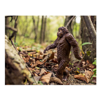 Bigfoot vykort   Sasquatch