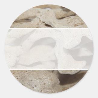 Bild av svampen runt klistermärke