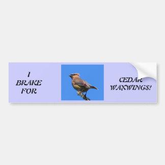 Bildekal för fågelälskare!