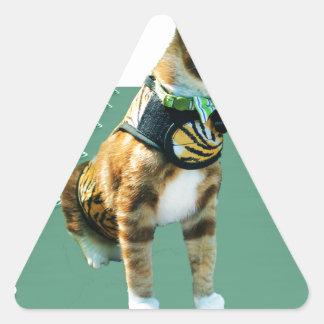 Bilder av min katt Frasier Triangelformat Klistermärke