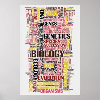BiologiWordle nr. 11 Poster