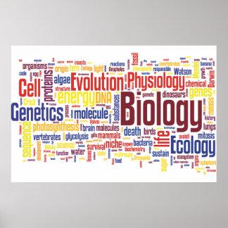 BiologiWordle nr. 4 Poster