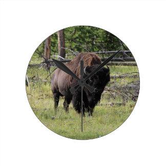 Bison av Yellowstone Rund Klocka