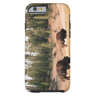 Bison i den Yellowstone nationalparken, Wyoming Tough iPhone 6 Fodral