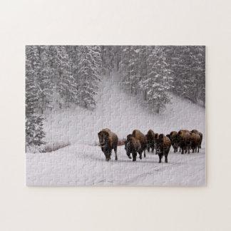 Bison i vinter pussel
