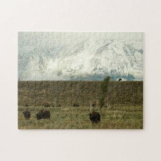 Bison på storslagen Teton nationalparkfotografi Pussel