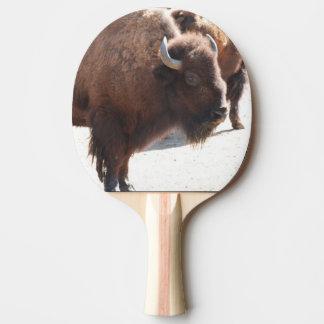Bison Pingisracket