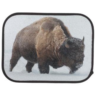 Bison som går i snö bilmatta