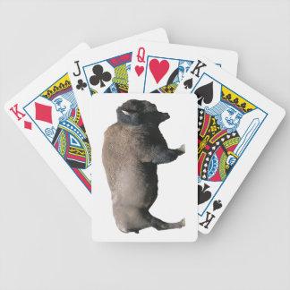 Bison Spelkort