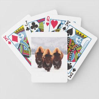 Bison tre spelkort