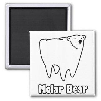 Björn för tand för kindtandbjörn polar kylskåps magneter