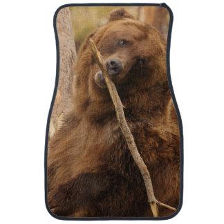 björn som leker med en pinne bilmatta
