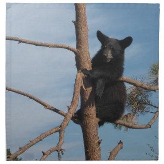 Björnunge i ett träd tygservett
