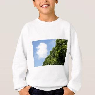 Blå himmel med vitmolnet och gröntlövverk tröja