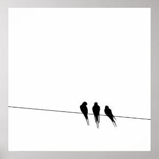Blackbirds Silhouette binder på Poster