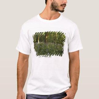 Blåklockor i en skog tee shirt