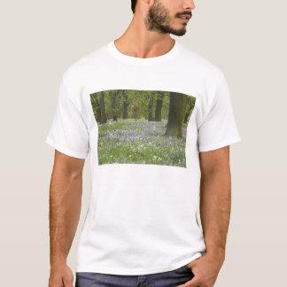 Blåklockor och Oakträd i våren, lite Hagley T-shirt