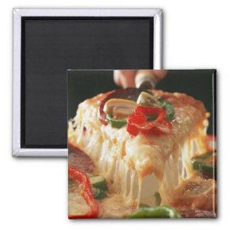 Blandad Pizza Magnet