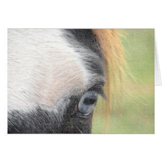 Blåögd hästfödelsedag hälsningskort