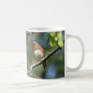 Blåsångare Mug. Kaffemugg