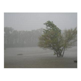 Blåsig storm för skurkroll över en redan vykort