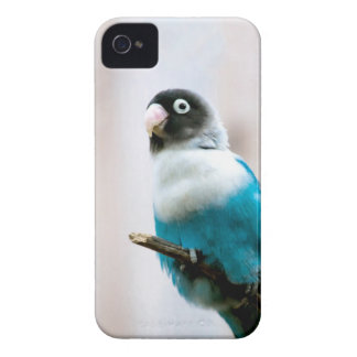 Blått maskerad Lovebird Case-Mate iPhone 4 Skydd