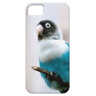 Blått maskerad Lovebird iPhone 5 Skal