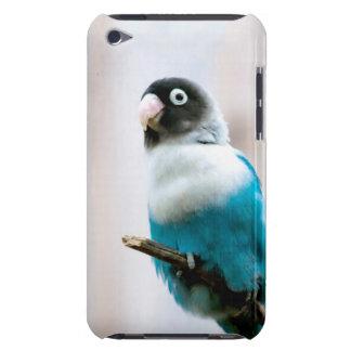 Blått maskerad Lovebird iPod Case-Mate Skydd