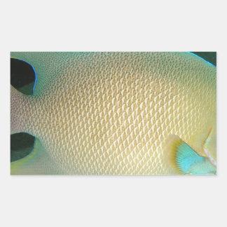 Blått-Solbränna-Grönt tropisk fisksimning i vatten Rektangulärt Klistermärke