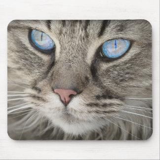 Blått synad katt Mousemat Musmatta