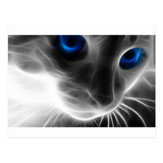 Blått synad svartvit kattunge vykort