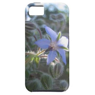 Blåttblommadimma iPhone 5 Cases