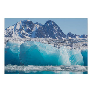 Blåttglaceiris, norge poster