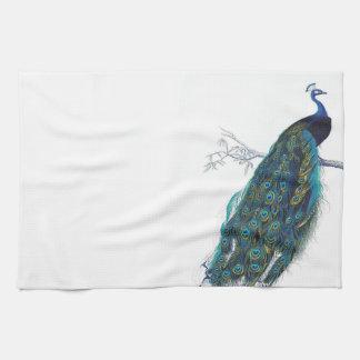 Blåttpåfågel med härliga svanfjädrar handuk