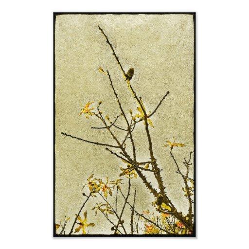 Blom- dekorativ natur konstfoto