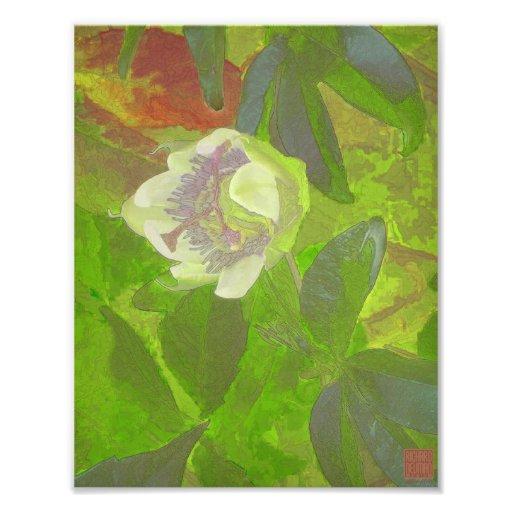Blom- extas i grönt fotontryck