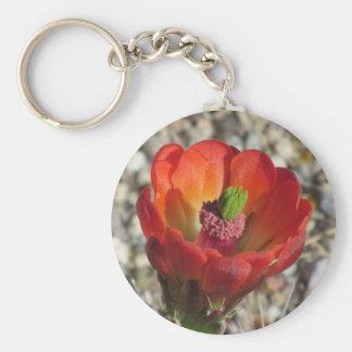 Blom för kaktus för Claretkoppigelkott Rund Nyckelring