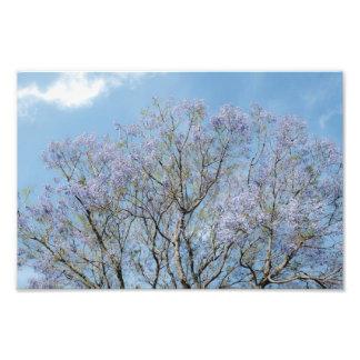 Blom- grenar fototryck