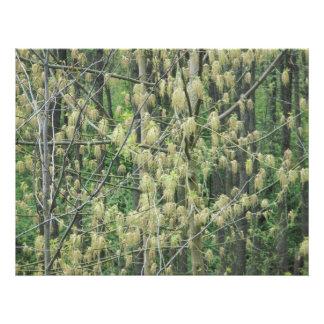 Blom- hängen fototryck