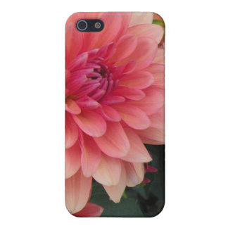Blom- iPhone 5 iPhone 5 Skydd