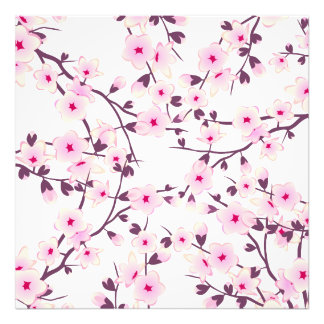 Blom- körsbärblommar fototryck