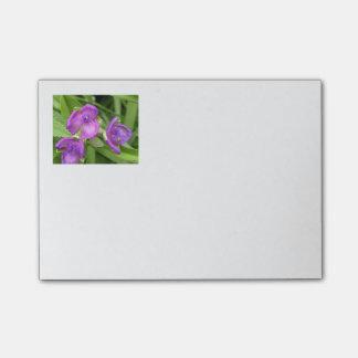 Blom- lilor postar dess post-it block