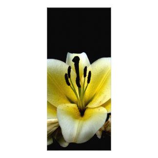 Blom- Rackcard Rack Kort Designs