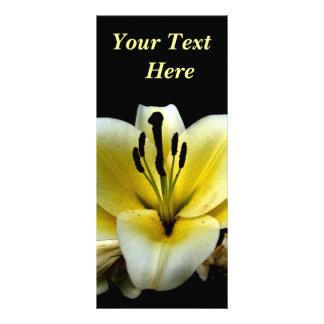 Blom- Rackcard Rackkort Med Full Färg